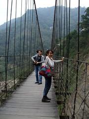 adventure, suspension bridge, rope bridge, bridge,