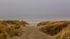 Foggy Seascape