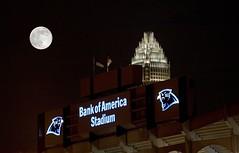 BofA Stadium  - Charlotte North Carolina