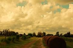 North Caledonia Ranch