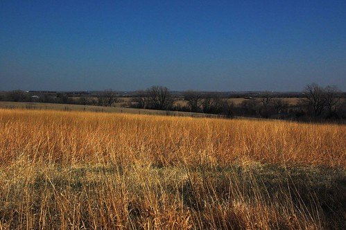 nebraska prairie 1976 1776 flowrbx notever natviegrasses neverbeenplowed bicentennialprairiemarker