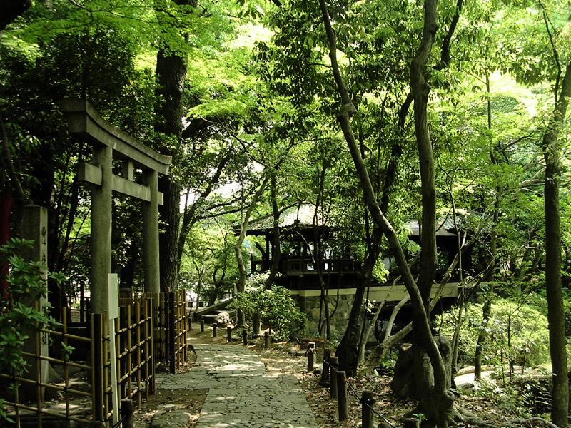 Bosque Nagoya-Japón