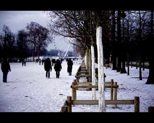 "Parigi, Jardin des Tuileries dal libro ""Tropico del Cancro"" di Henry Miller"