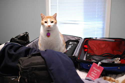 Tenzing's opinion about packing seems rather clear.