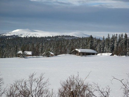winter norway norge norwegen valdres oppland ellingsaeter
