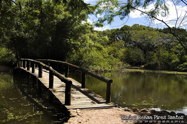 fotos jardim botanico porto alegre : fotos jardim botanico porto alegre:Jardim Botânico – Porto Alegre – RS