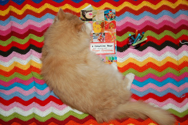 A Creative Year - my book and the prettiest cat ever - photo by @ihanna - Copyright Hanna Andersson