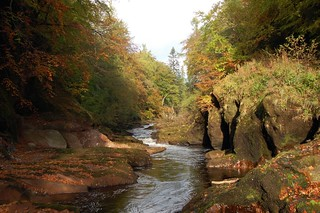 Edzell Woods: The River North Esk