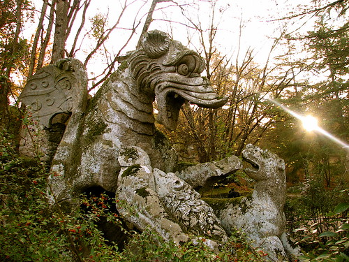 The stone of dragon - The holy wood