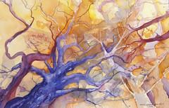 Rumi's Trees