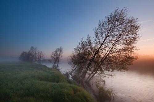 morning trees light sky mist tree nature water misty fog sunrise river poland silence qba liwiec kamienczyk kamieńczyk platinumheartaward qbafrompoland