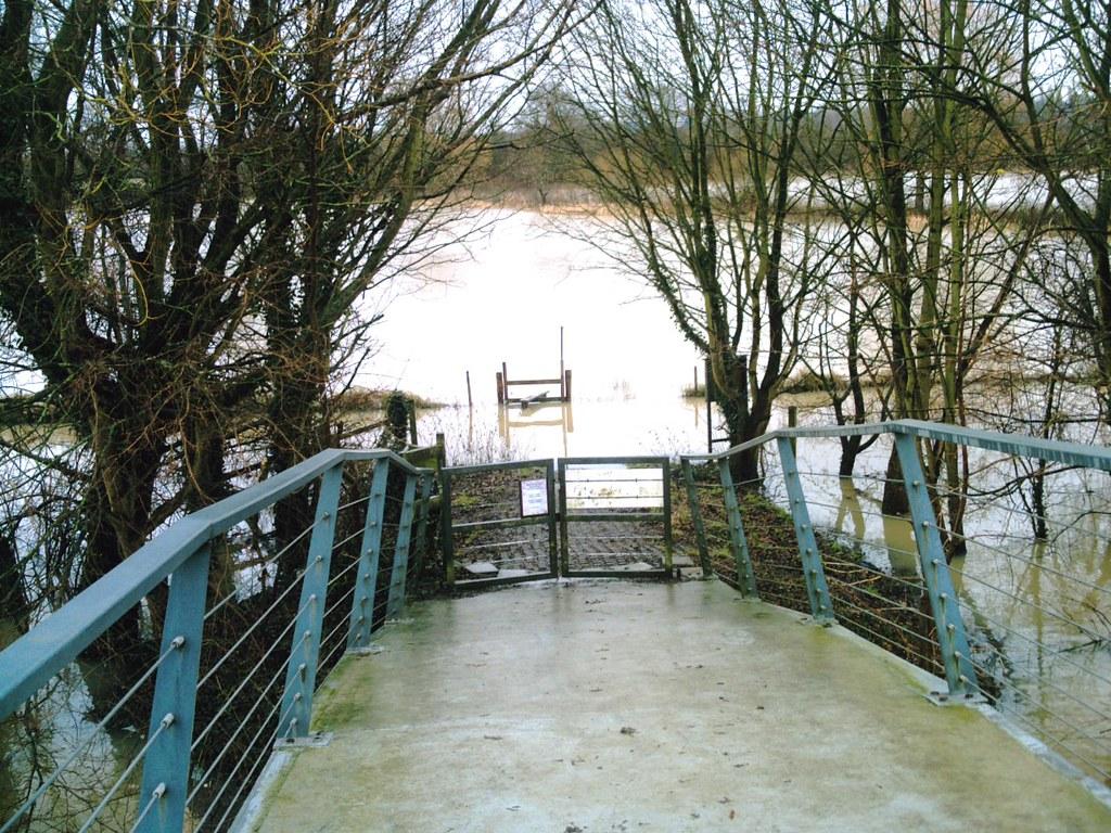 Book 1 Walk 13 (Oxford round) Wolfson College Nature Reserve riverside walk along the River Cherwell: ABANDONED! D.Allen Vivitar 5199mp