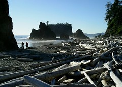 Oregon/Washington Coast by Jim