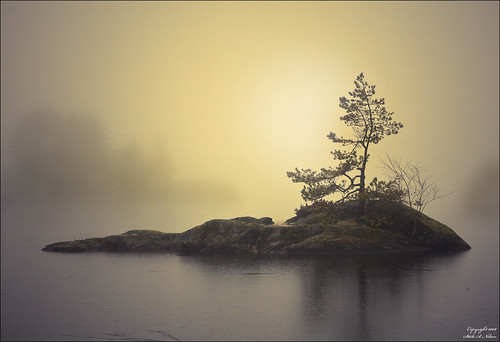 The Little Island in the Fog