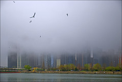 Foggy Morning Off Navy Pier -- Chicago (IL) May 2011