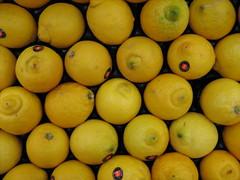 citrus, valencia orange, lemon, meyer lemon, yuzu, produce, fruit, food, tangelo, sweet lemon, bitter orange,