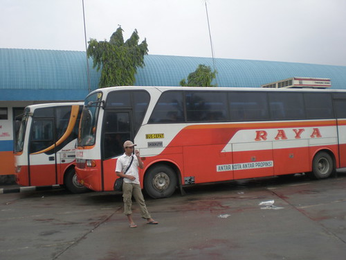 Bus Malam Raya http://www.flickr.com/photos/aminmagatani/2277492326/