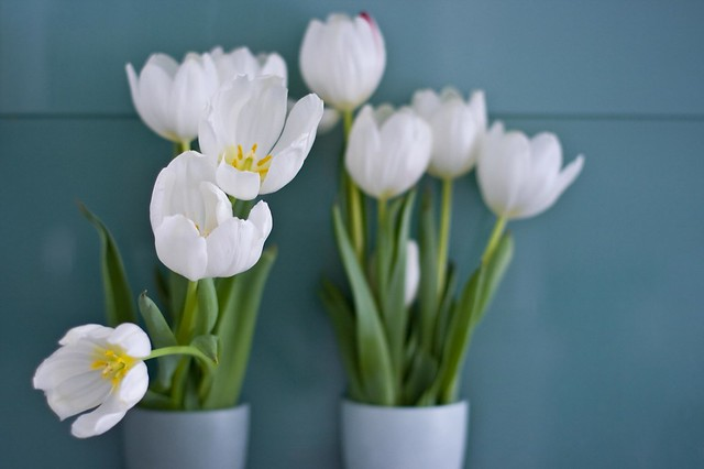 WHITE TULIP VASE – Vases Sale
