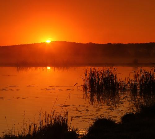 morning red sky sun reflection water grass sunrise landscape landscapes dam australia queensland 2470mm beaudesert gleneagle scenicrim colorphotoaward canon7d