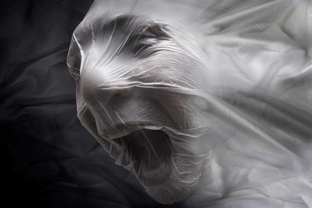 Silent scream (vol 2)