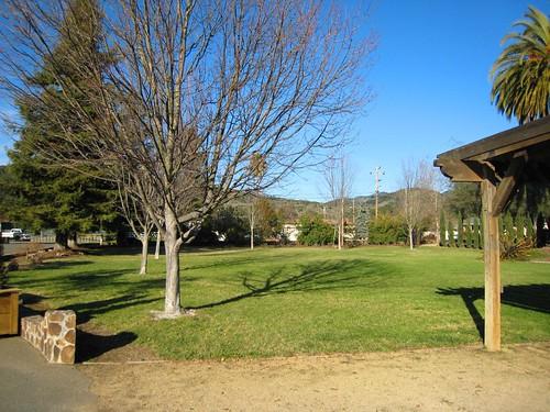 sebastiani, picnic, sonoma IMG_1374