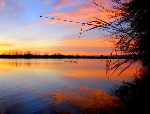 park morning orange water birds clouds sunrise river washington columbia leslie groves richland
