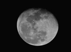 La luna, 24 de Enero 2008 037