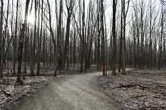 Girdled Road Reservation