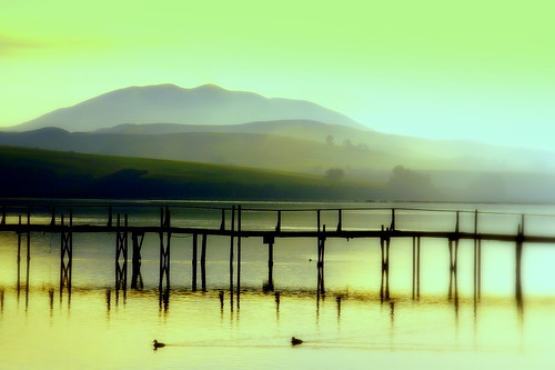 california mist green water darkroom landscape hills marincounty pointreyes simple westmarin inverness tomalesbay sonydlsra100 diamondclassphotographer diamondaward heartawards betterthangood quantaray18200 thephotographyblog