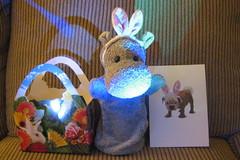 Easter Hippo