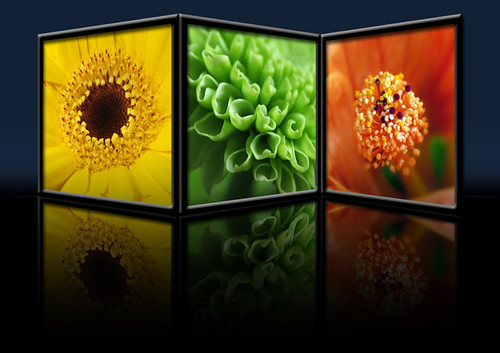 Triptych Photography Flickr Flower Frame Triptych Flickr