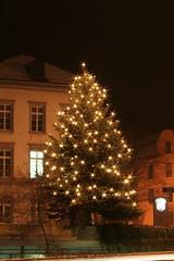 Christmastree in Baden