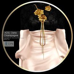 [LTD_MP] Zaria_Champagne