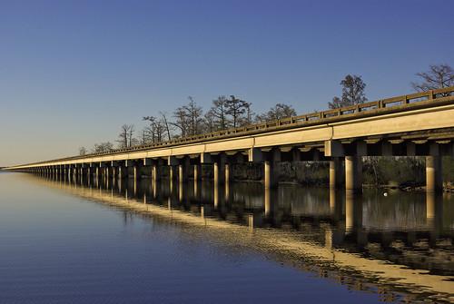 Bridging Nature