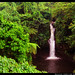 Olemoe Waterfall in Savaii