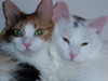 Molly and Meagan