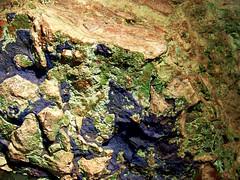 Maia S Mineral Galaxy Natural Mascara Black