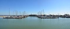 Corpus Christi Waterfront Panorama