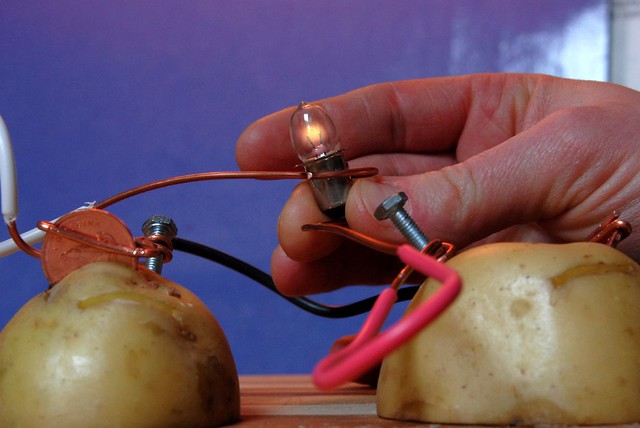 potato powered light bulb essay How can i light up an led with potatoes traditional incandescent light bulbs need a huge amount of energy to energy efficient light build a potato-powered.
