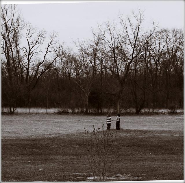 Rest Stop, December 2007