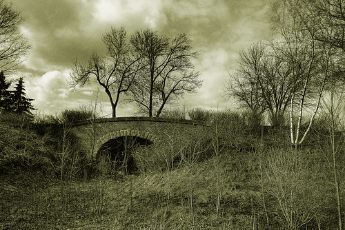 bridge trees blackandwhite bw fall nature sepia landscape