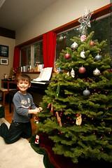 nick hanging ornaments on the xmas tree    MG 6759