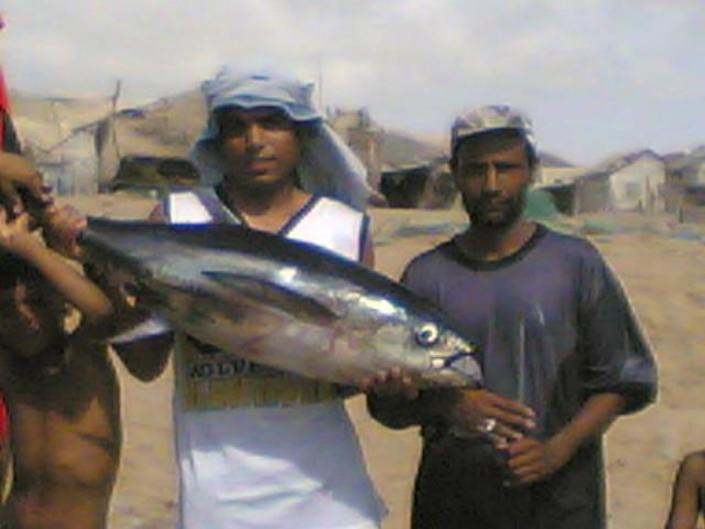 Tuna | Mr. Fucked up Irani posing with tuna | judeo316 | Flickr