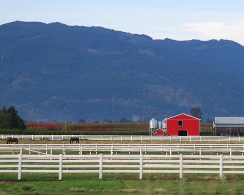 farm near Abbotsford