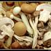 Mushrooms ! by Ko@la *('O')*