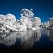 IR Lake by garbz