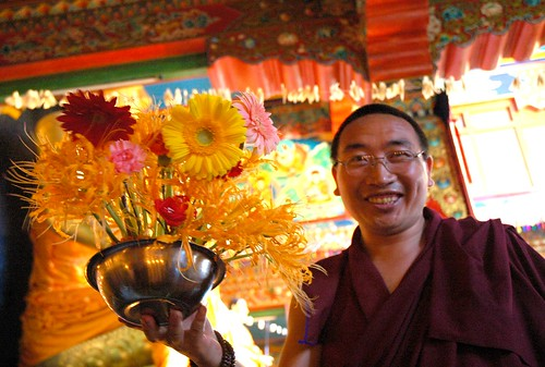 Master of Ceremonies Celebrates Lamdre, Celebrating Lamdre, a Tibetan Buddhist Monk (master of ceremonies) with a bright orange flower offering in a metal bowl, Tharlam Monastery, Boudha, Kathmandu, Nepal by Wonderlane