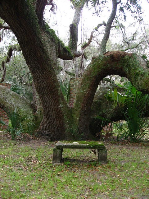 Header of a seat in the garden