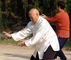 aikido(0.0), individual sports(1.0), contact sport(1.0), t'ai chi ch'uan(1.0), sports(1.0), combat sport(1.0), martial arts(1.0), chinese martial arts(1.0), baguazhang(1.0),