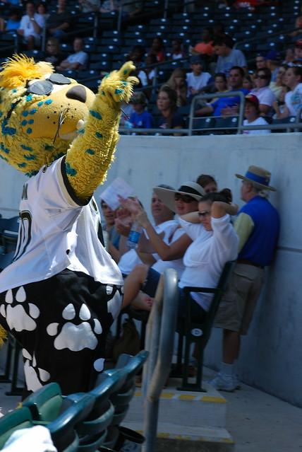 Jacksonville Jaguars Mascot Cake Smash